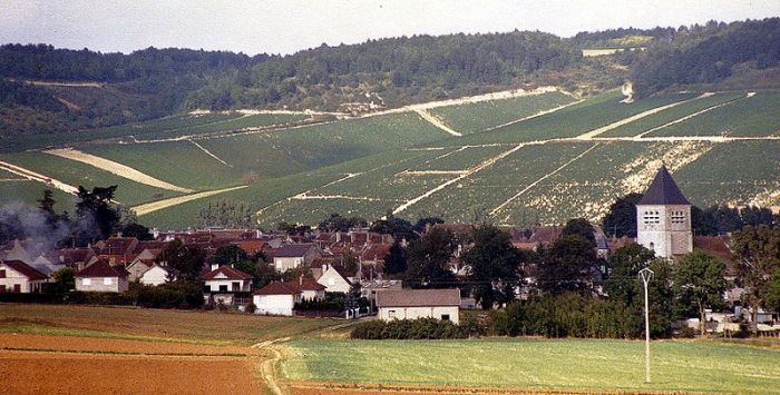 800px-A_village_with_vineyards_in_Champagne,_France_1987