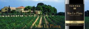 Banner-MaslaPLana