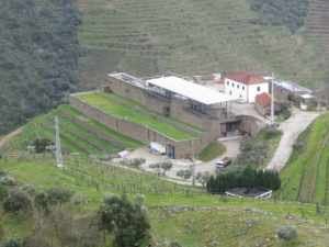 The-Niepoort-Winery-at-Quinta-de-Napoles--300x225