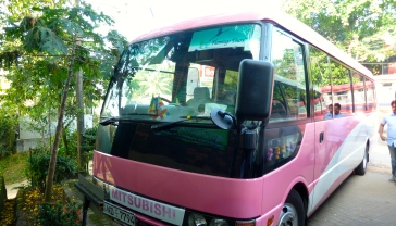 Flamingo Tours pink coach