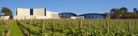 kooyong-winery-1024x267